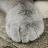 vu_duc.nguyen avatar image