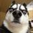 jing.c avatar image